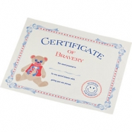 Picture of CERTIFICATE Of Bravery