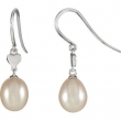 14kt White COMPLETE WITH STONE EARRINGS 25.00X06.85 MM Polished NONE