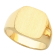 10kt Yellow 14.00 MM Polished GENTS SIGNET RING W/BRUSH FINI