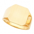 14kt Yellow 15.00 MM Polished GENTS SIGNET RING W/BRUSH FINI