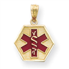 14k Red Enameled Medic ID Pendant