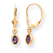 14K Gold Amethyst Earrings - February