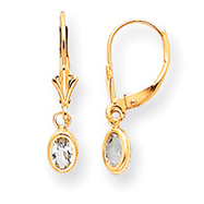 Picture of 14K Gold Aquamarine Earrings - March
