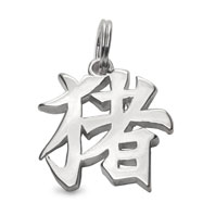 "Picture of Sterling Silver ""Boar"" Kanji Chinese Symbol Charm"